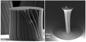 Densification de paquets de nanotubes par immersion dans de l'alcool