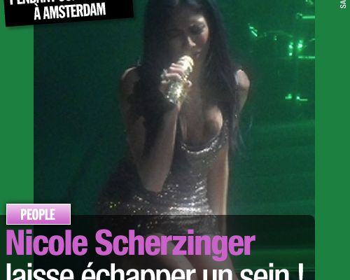 Nicole Scherzinger laisse échapper un sein !