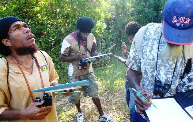 Bilan de 2 Stages SCO de formation aux suivis ornithologiques pour des guides de la Chaîne