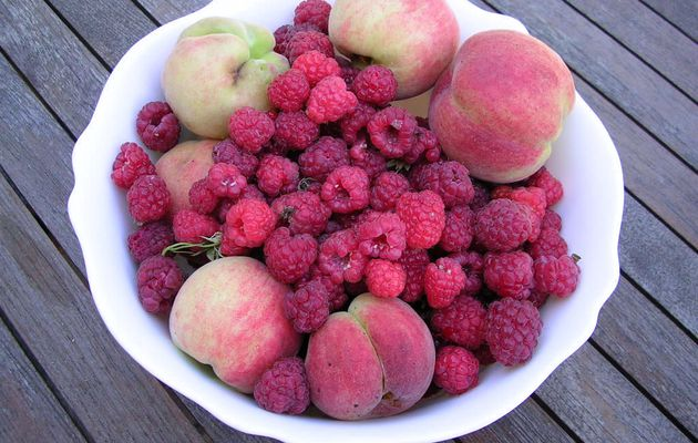 Fruits du jardin
