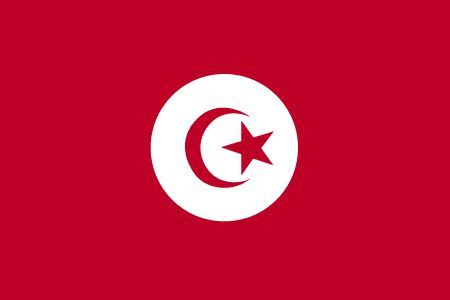 Pétition des dirigeants des partis démocratiques et de la société civile en Tunisie
