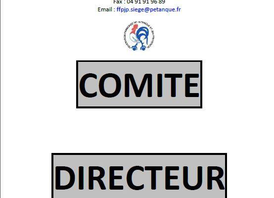 """Compte-Rendu """"Intégral"""" du Comité Directeur ( FFPJP )"""