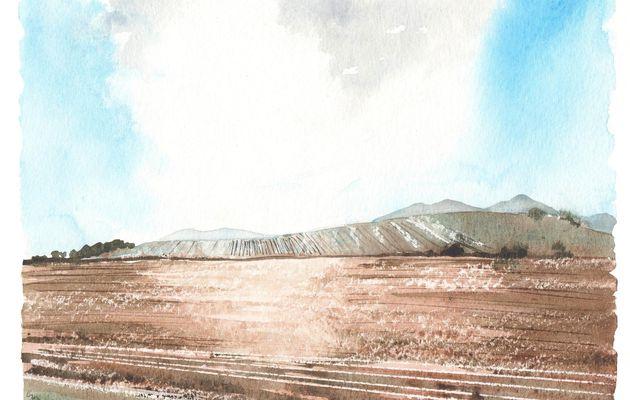 Stages 2010 d'aquarelle