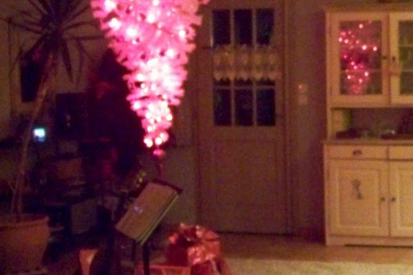 Noël Rose et Renversant