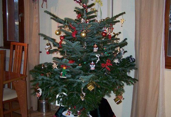 Notre décoration de Noël est faite ...