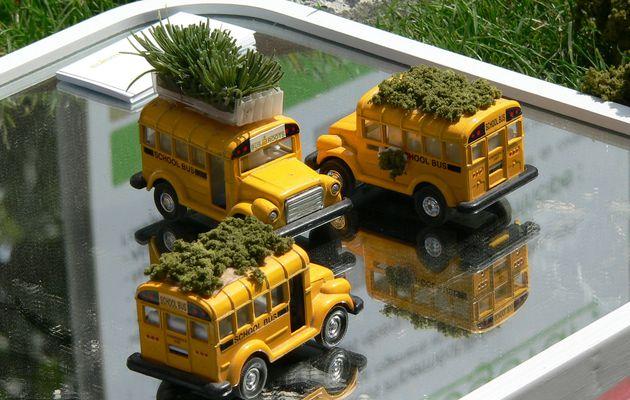 Les Bus Roots