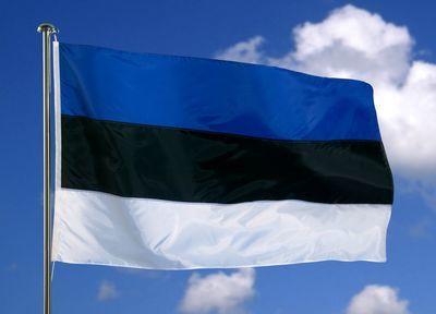 GEOPOLITIQUE, LE CHOC DES MEMOIRES :Polémique autour du « Monument des libérateurs de Tallinn » en Estonie, 2006 – 2007 :