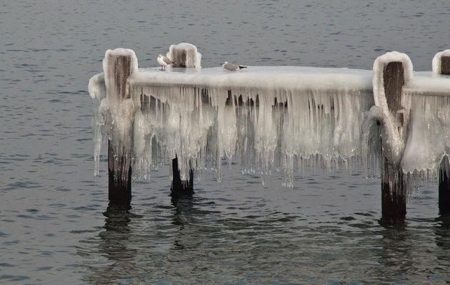 Lac Léman en hiver