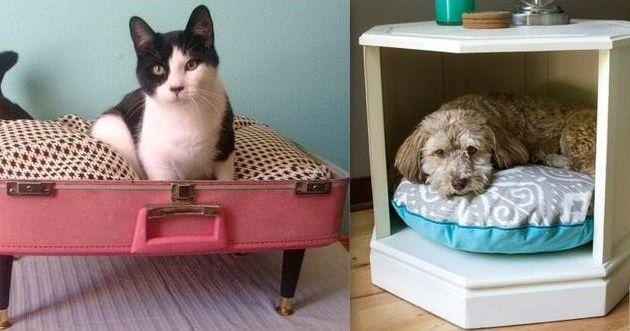 Couchettes pour animaux domestiques