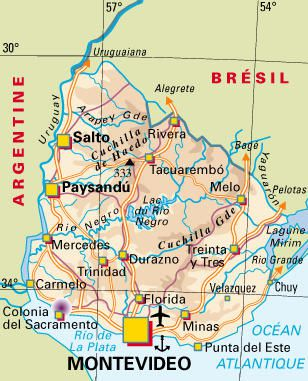 Gymnocalycium uruguayense