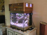 l' Aquarium de Pat.