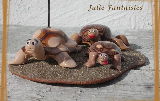 Famille Tortues