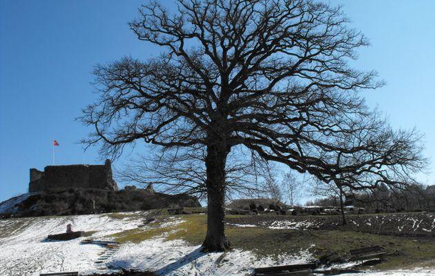 Ambiance d'hiver au château d'Epinal
