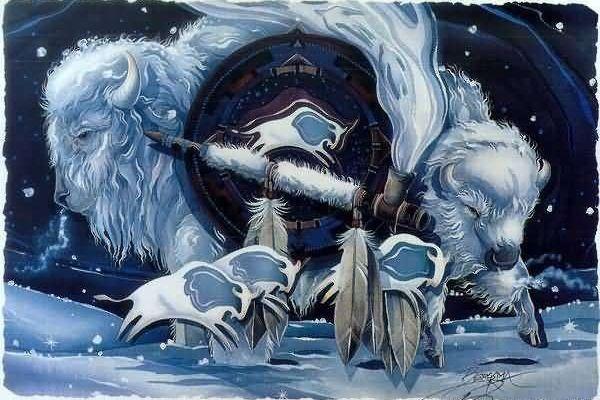 Légende Amérindienne : La femme bison blanc