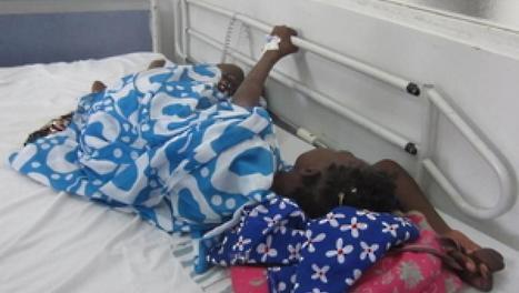 Santé Afrique : SOS pour les plantes médicinales...