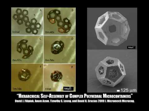 Self-Assembly of Lithographically Patterned 3D Micro/Nanostructures