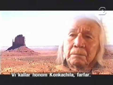 The Hopi prophecy