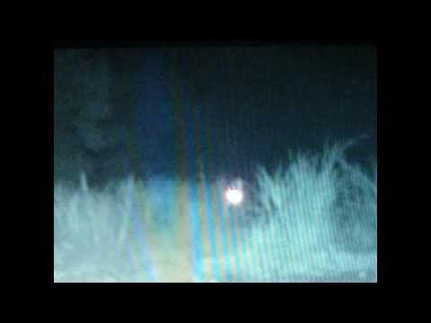 Film extra-terrestre Canada Octobre-Novembre 2010