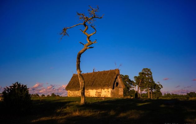 Fårö at Gotland  Yes Gotland is a lovely island in the baltic sea at Swedish east coast. Just north ...