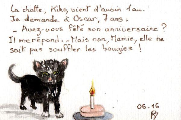 Humour : Kiko, la chatte