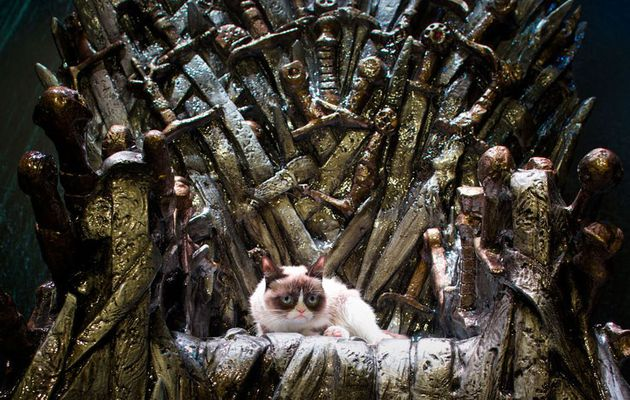 Grumpy Cat + Game of Thrones = perfect combo...
