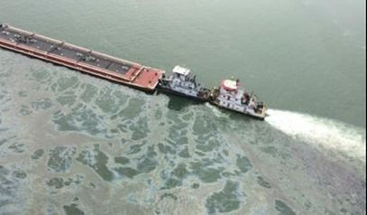 Assessing the Damage From the #Galveston #Oil...
