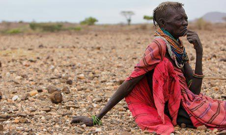 Afrique: La FAO lance un appel de fonds urgent pour la Corne de l'Afrique