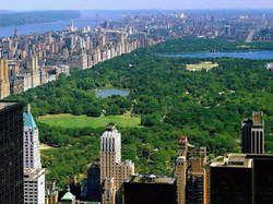 Découvrir New York, et rêver !