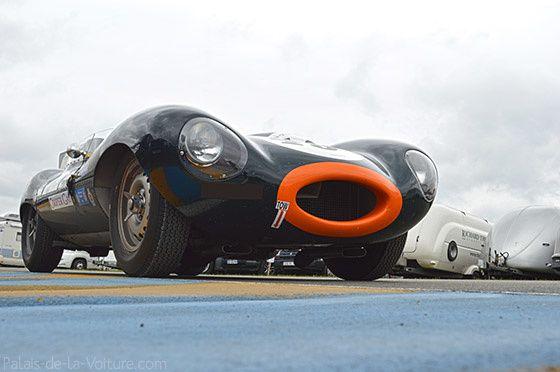 AG46 • Jaguar Type D 1955