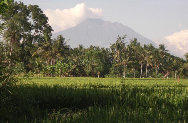Indonésie : de rizière en volcans