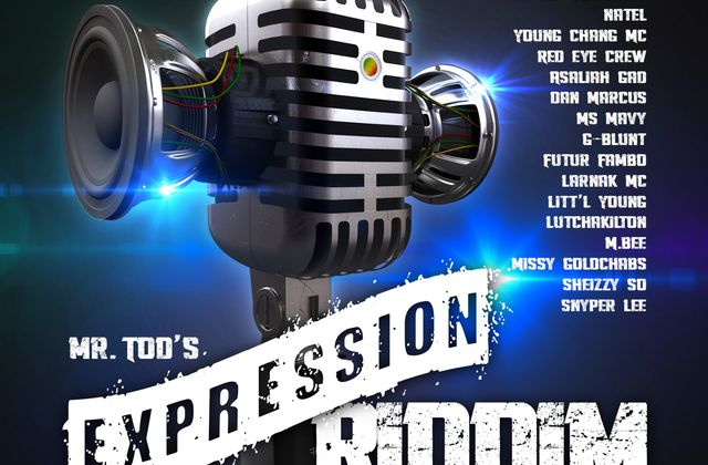 [RIDDIM] EXPRESSION RIDDIM 2013 ALIZES RECORDS