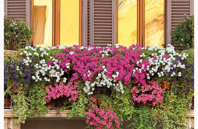 Besoin d'un jardinier pour embellir et soigner votre havre de paix. Demandez votre devis personnalisé...