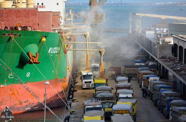 L'Algérie continue d'acheter du blé contaminé de France