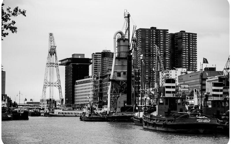 [Photos] Nos vacances - Jour 4 - Rotterdam - Petit aperçu.