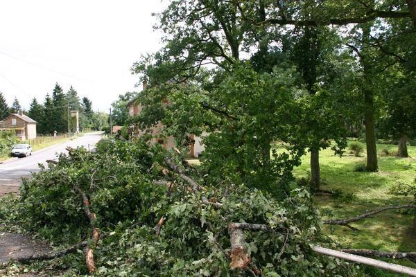 Photo : France : Etang du Puits (18) après la tempête