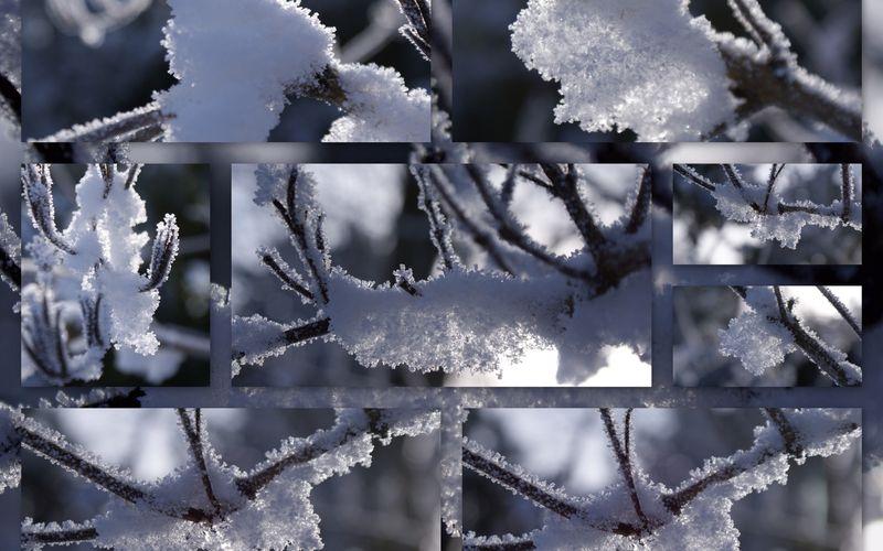 Couleur hivernale