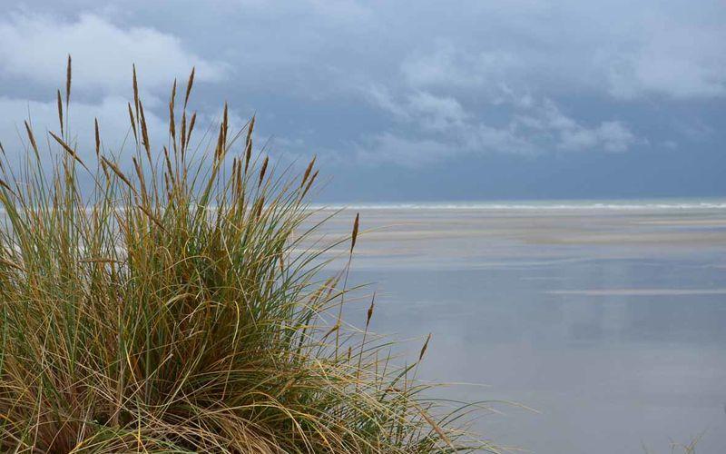 Week end ressourçant sur la côte d'Opale