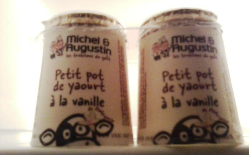 Petits pots de yaourt à la vanille Michel & Augustin