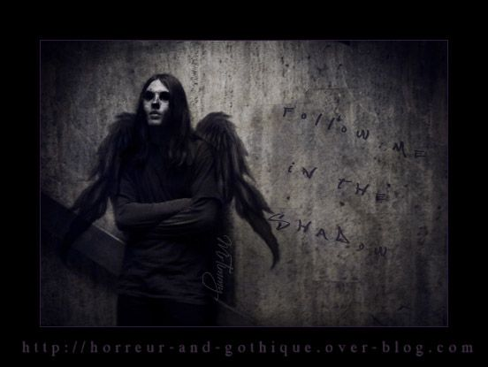 Follow me in the Shadow - Dark Angel