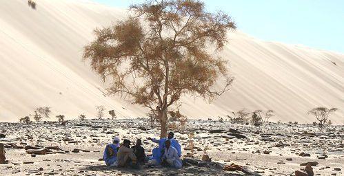 Adrar - Mauritanie(3) : La dune qui chante au toucher de vos fesses