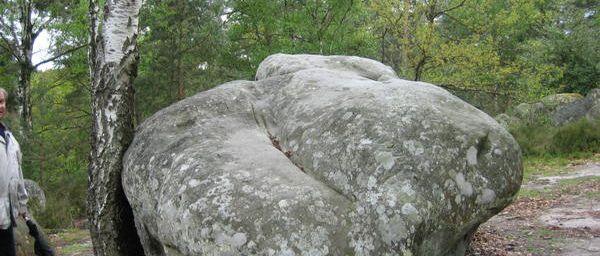 Les rochers de la forêt de fontainebleau..