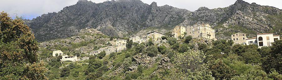 Lama - Corse (2B)