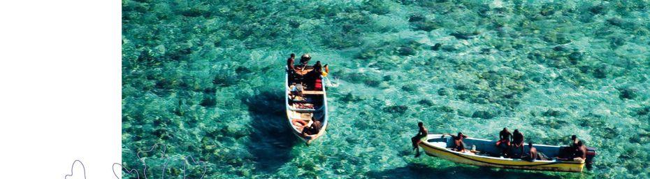 Agence des Aires marines protégées (AMP)… Richesses de Mayotte