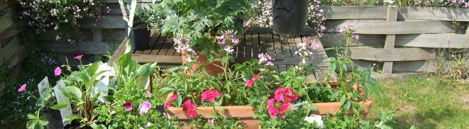 Une escapade au paradis des jardiniers
