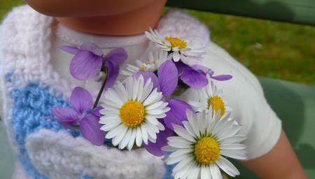 Petit bouquet de violettes et pâquerettes.