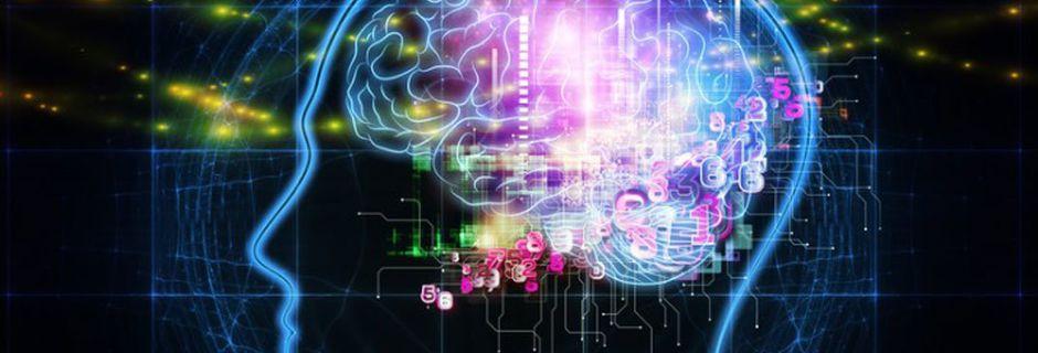 Des scientifiques de Harvard auraient localisé la conscience dans le cerveau humain