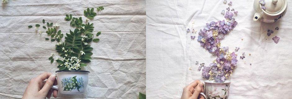 Marina vous emmène dans son univers à travers des compositions florales pleines de poésie