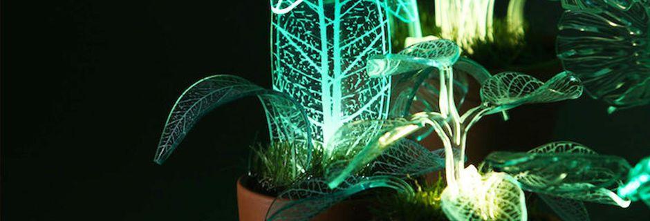 Illuminez votre intérieur avec ces lampes qui semblent tout droit sorties du monde d'Avatar