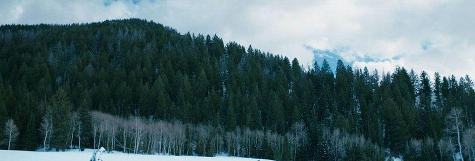 Ne loupez pas Wind River, ce thriller haletant qui vous plonge au cœur d'une réserve amérindienne