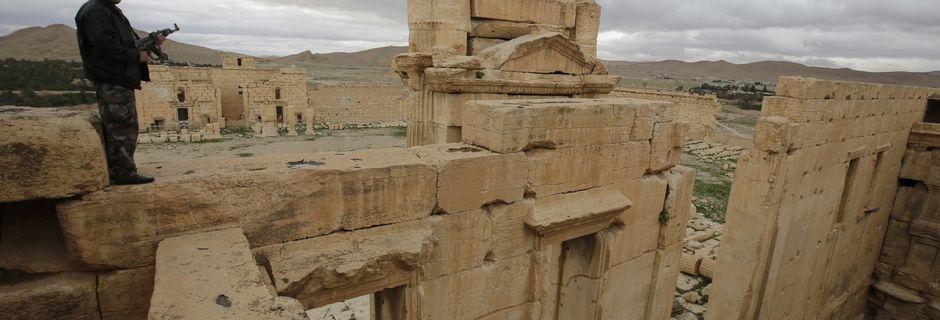 Palmyre menacée par Daech: comment les groupes armés islamistes saccagent le patrimoine mondial